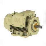 motor elétrico trifásico assíncrono