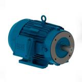 motor elétrico trifásico