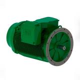 motor elétrico trifásico Real Parque